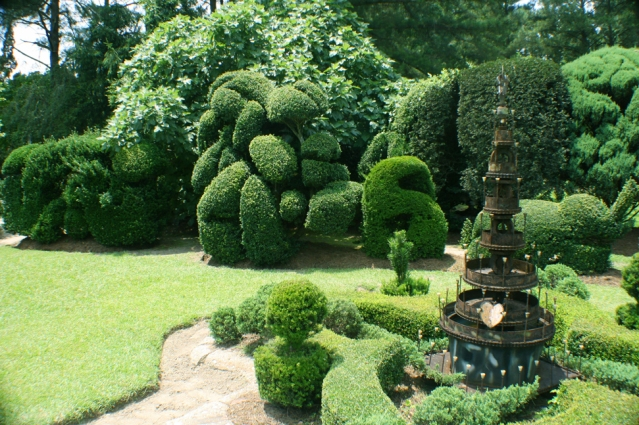 Artistic and whimsical topiary, in the backyard of artist Pearl Fryar, can be seen for free with just a short drive away in Bishopville, SC.  Photo courtesy of Jessica Wilson